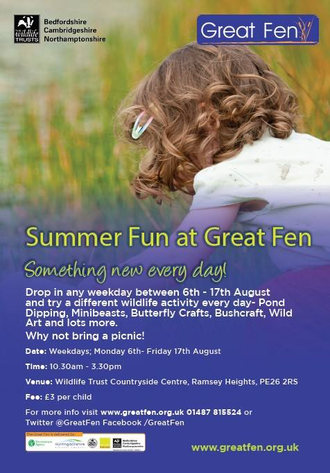 Summer Fun at the Great Fen